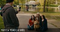 ������ ������ / Ted (2012) BDRip-AVC