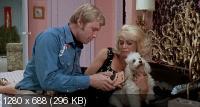Полуночный ковбой / Midnight Cowboy (1969) BDRip 720p + BDRip
