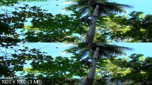 http://i48.fastpic.ru/thumb/2013/0504/df/_02552575393fc481e09f958bf67246df.jpeg