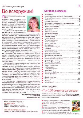 Делаем сами №9 (май 2013) Украина