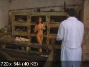Мячик / The Ball (2003) DVDRip