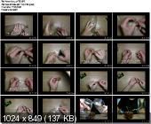 Капельный полив для комнатных растений своими руками (2013)