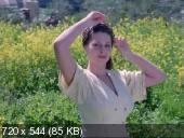 Горько! (1998) DVDRip