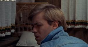 У холмов есть глаза / The Hills Have Eyes (1977) BDRip-AVC | MVO | AVO
