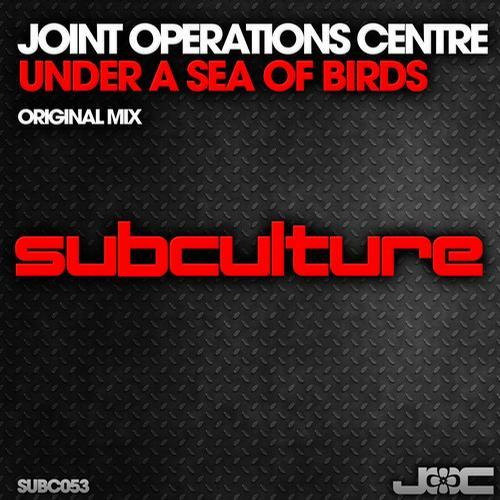 Joint Operations Centre - Under a Sea of Birds (2013)