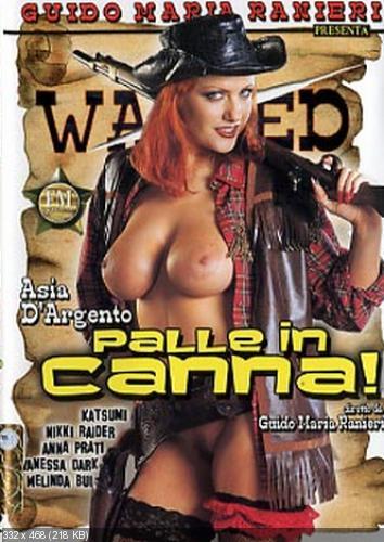 Порно фильмы про дикий запад